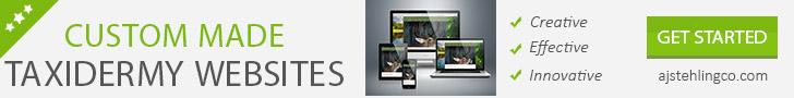 728x90-taxidermy-websites