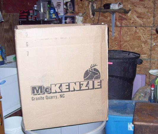 Mckenzie taxidermy
