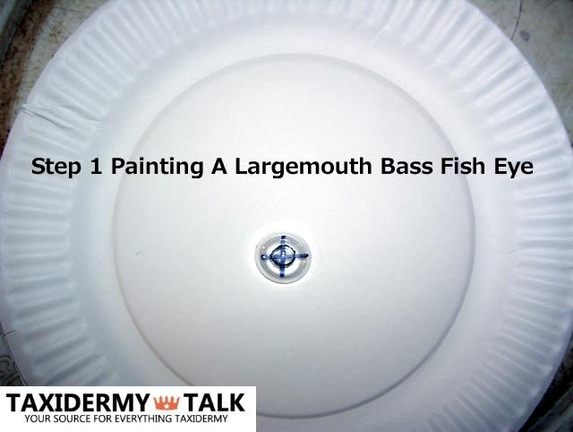 Step 1 Painting a Largemouth Bass Fish Eye