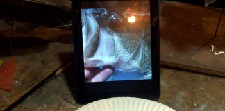 Painting a Largemouth Bass Fish Eye