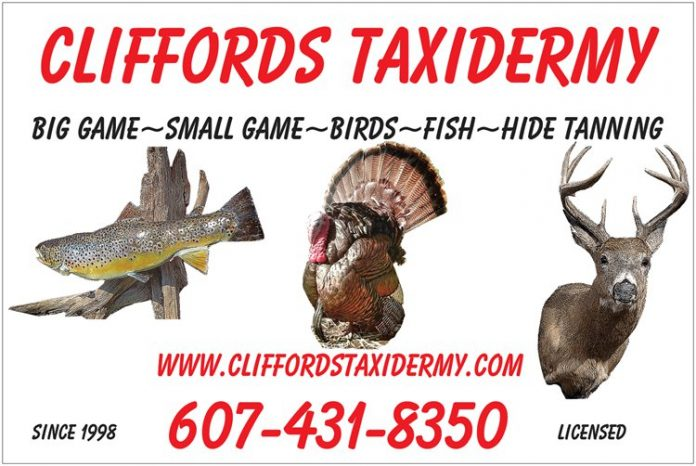 Central New York Taxidermy